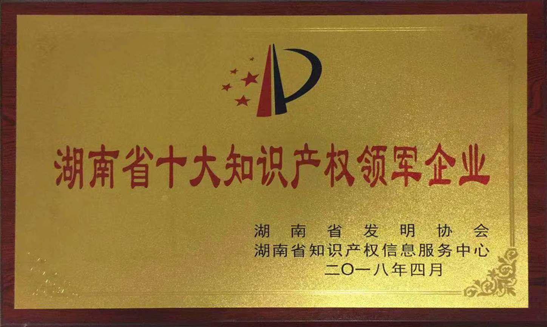 湖南省十大知识产权领军企业(盈峰中联)
